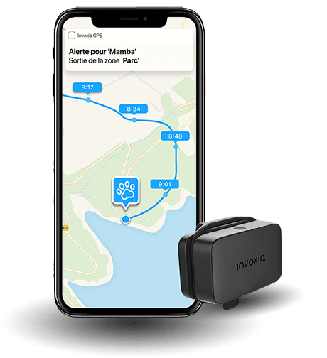 application-capteur-invoxia-pet-tracker-gps