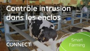 smart-farming-contrôle-intrusion-enclos