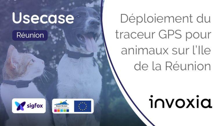 Traceur-Gps-Animaux-Pet-Tracker-Invoxia-Sigfox