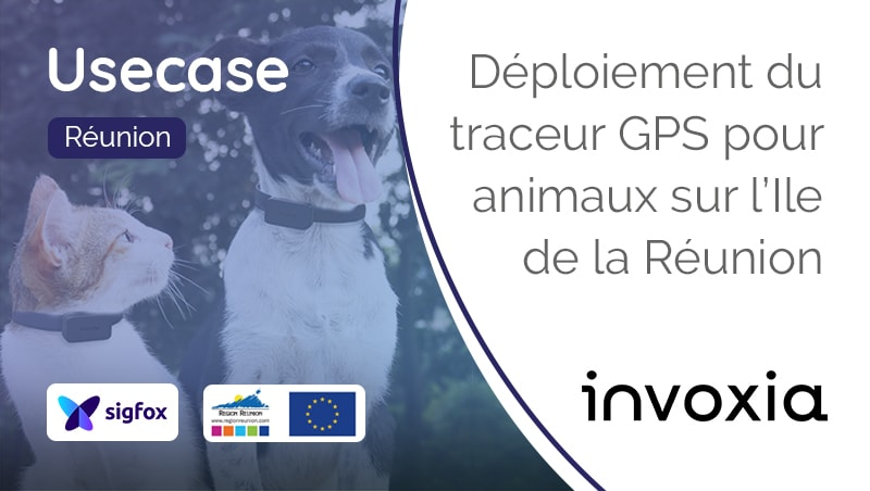 Traceur-Gps-Animaux-Pet-Tracker-Invoxia-Sigfox
