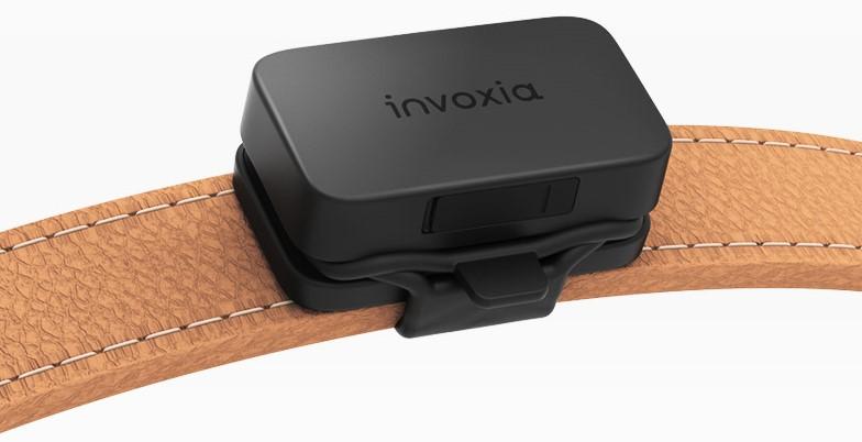 traceur GPS d'Invoxia pour chiens et chats disposé sur un collier pour animal.