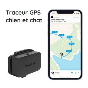 Traceur-gps-chien-chat